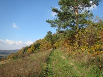 3-Grundstückskauf